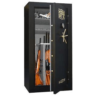 gun safe in Seattle